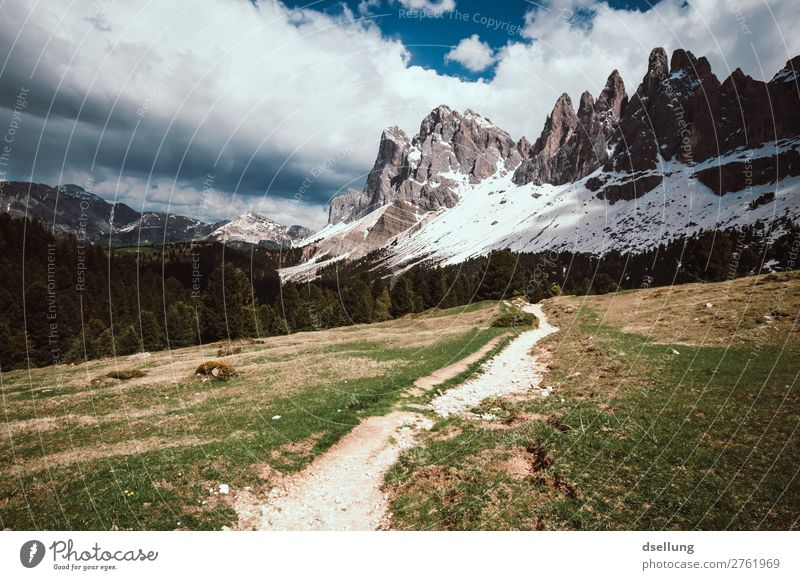 Hiking path to the Dolomites Panorama (View) Day Exterior shot Colour photo Target Nature Beginning Green Gray Brown Wild Natural Going To enjoy Sharp-edged