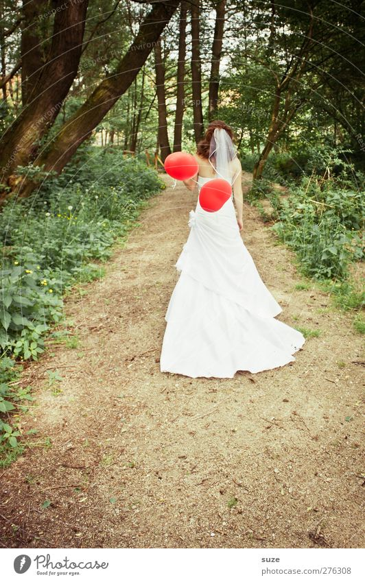 Human being Woman Nature Youth (Young adults) Green Beautiful Summer Tree Red Adults Forest Landscape Environment Feminine Lanes & trails Feasts & Celebrations