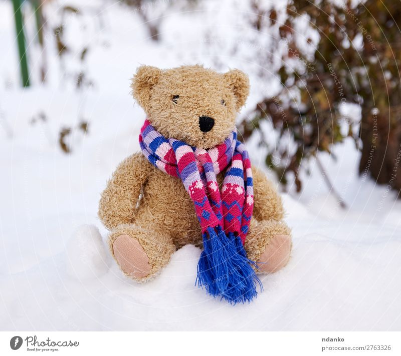old teddy bear in a scarf sits on white snow Winter Snow Child Nature Weather Park Toys Doll Teddy bear Old Sit Small Cute Soft Brown White Love Loneliness Bear