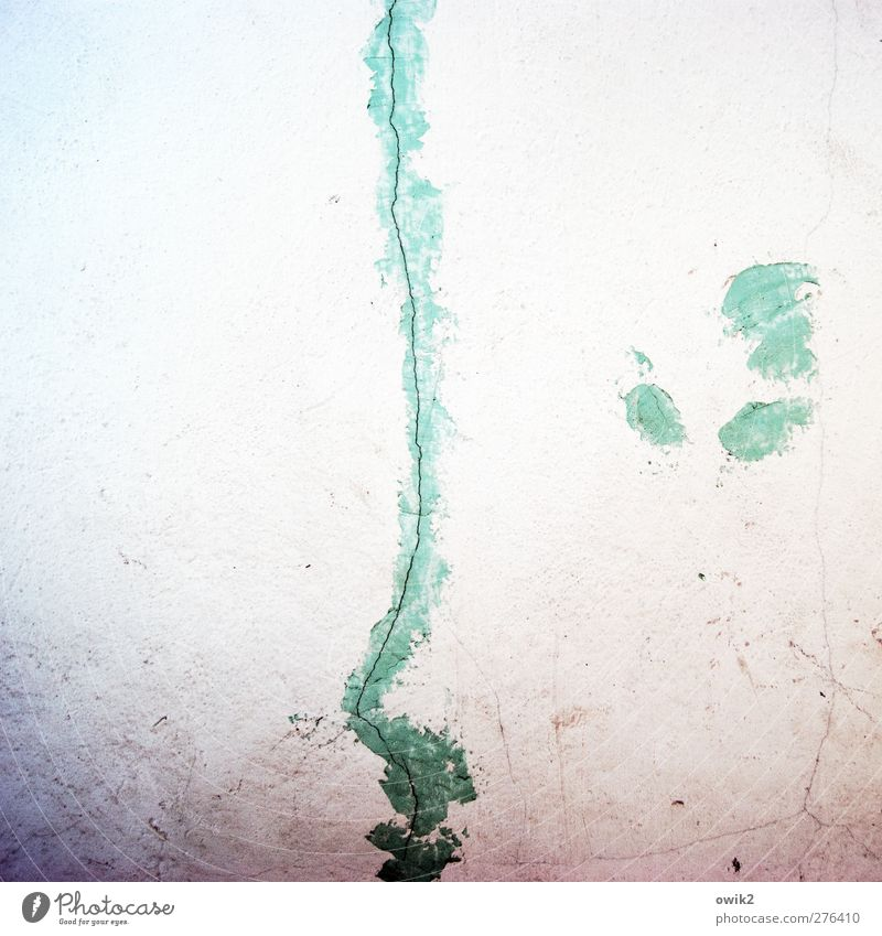 silhouette Wall (barrier) Wall (building) Plaster Thin Authentic Simple Long Violet Turquoise White Crack & Rip & Tear Colour Repair Silhouette Face Profile