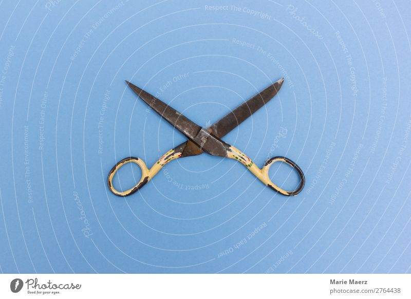 Rusty scissors Stationery Scissors Make Old Blue Brave Determination Modest Threat Past Transience Change Tool cut Open Abbreviate Limit Colour photo