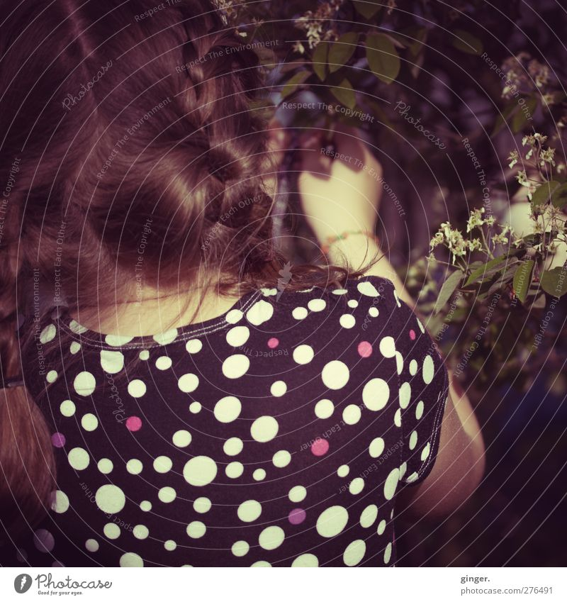 Child Beautiful Flower Girl Leaf Back Infancy Individual Dress Discover Brunette Patch Section of image Partially visible Anonymous Braids