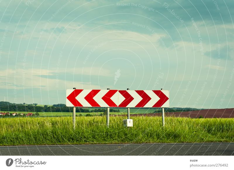 The direction is rough Summer Environment Nature Landscape Sky Beautiful weather Meadow Field Transport Traffic infrastructure Street Lanes & trails Road sign