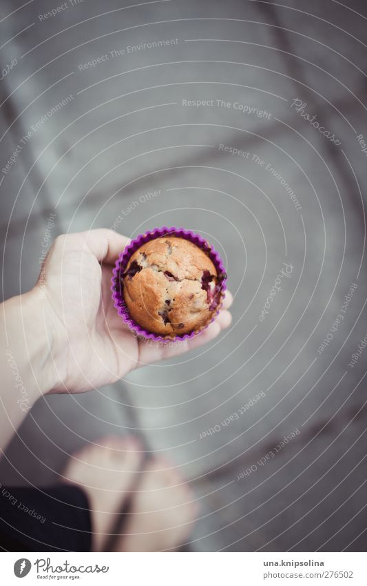 a muffin for you Food Dough Baked goods Cake Muffin Nutrition Human being Hand 1 18 - 30 years Youth (Young adults) Adults To hold on Fresh Delicious Natural