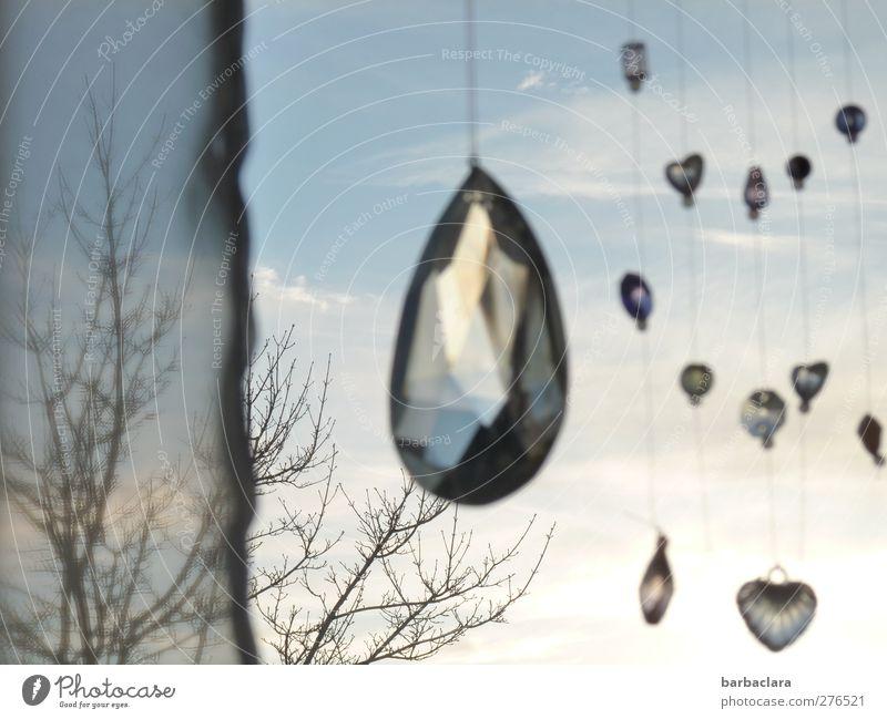 hanging around Living or residing Decoration Drape Sky Tree Window Glass Crystal Heart Sphere String Hang Illuminate Glittering Bright Blue Moody Happiness