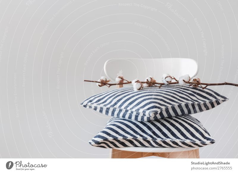 Striped cushions and cotton branch on a chair Plant Blue Colour Beautiful White Flower Architecture Wood Interior design Style Copy Space Gray Design Decoration
