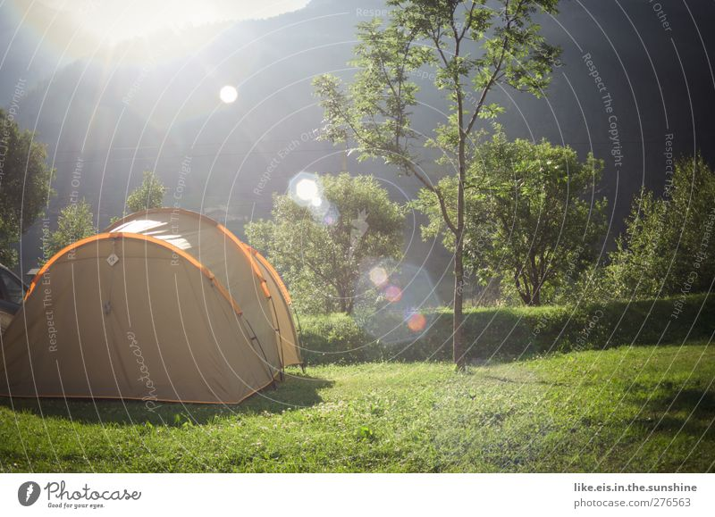Good morning! Leisure and hobbies Vacation & Travel Tourism Trip Adventure Far-off places Freedom Camping Summer Summer vacation Mountain Hiking Nature Tree