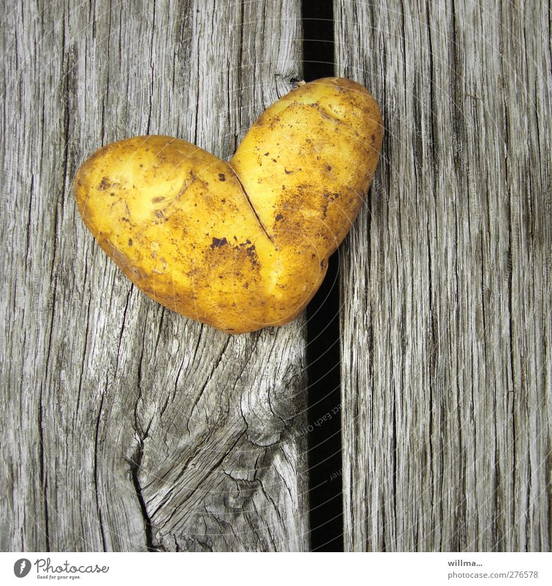 Yellow Love Healthy Eating Gray Wood Food Birthday Heart Nutrition Sign Symbols and metaphors Vegetable Appetite Organic produce Dinner