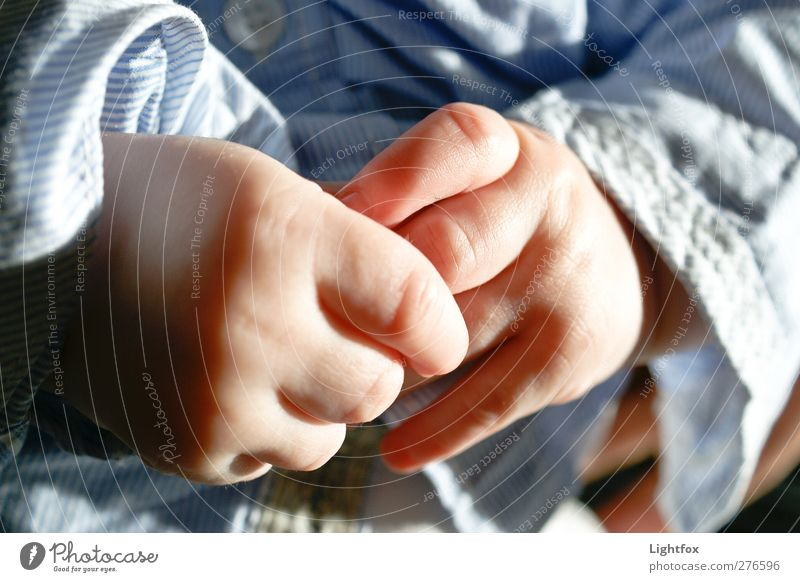 Human being Child Blue Hand Girl Adults Movement Boy (child) Healthy Masculine Infancy Skin Baby Fingers To enjoy Touch