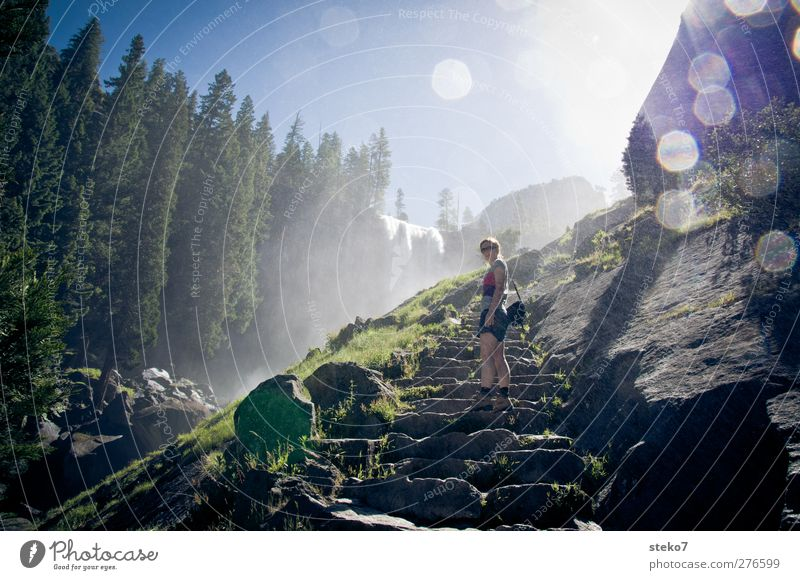 misty trail Human being Young woman Youth (Young adults) 1 18 - 30 years Adults Cloudless sky Sunlight Summer Beautiful weather Fog Forest Rock Waterfall Stairs