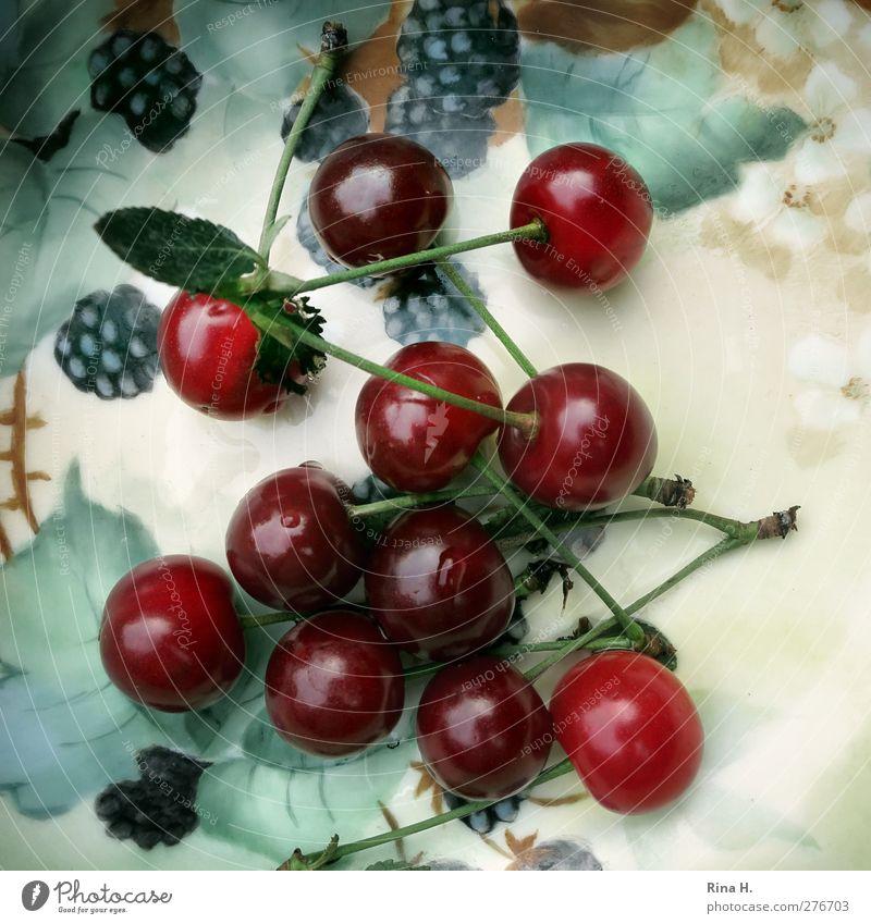 Cherries from neighbour's garden Fruit Cherry Blackberry Crockery Bowl Summer Leaf Fresh Healthy Delicious Natural Sweet Desert bowl Still Life Vitamin