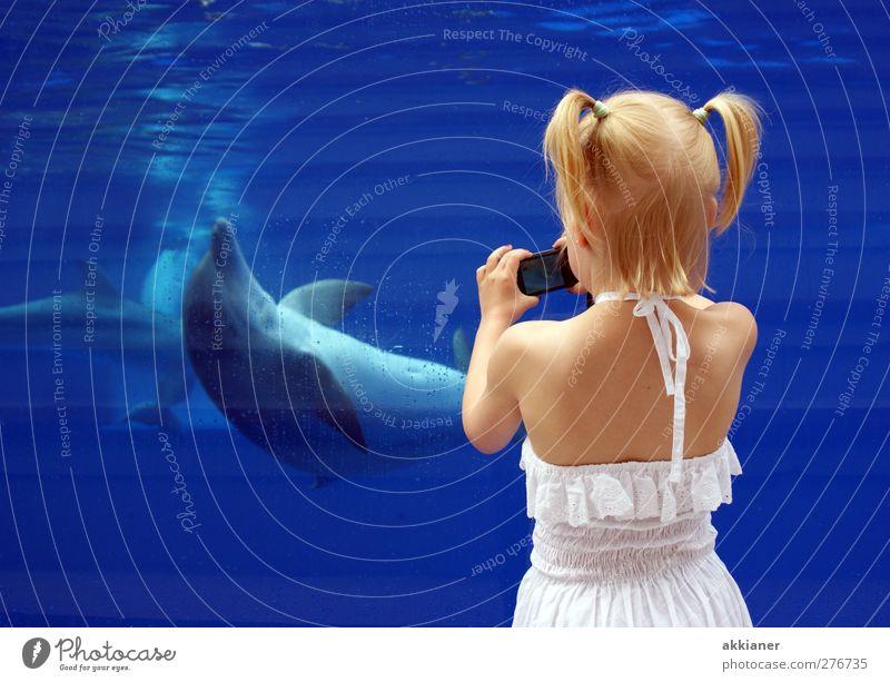 Human being Child Nature Blue Water White Hand Girl Animal Environment Feminine Hair and hairstyles Head Swimming & Bathing Body Back