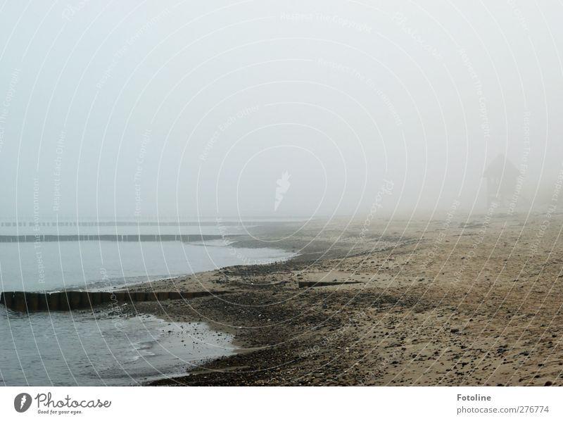 I wonder what's hidden in the fog. Nature Landscape Elements Earth Sand Water Sky Autumn Fog Coast Beach Baltic Sea Ocean Threat Dark Wet Natural Gray