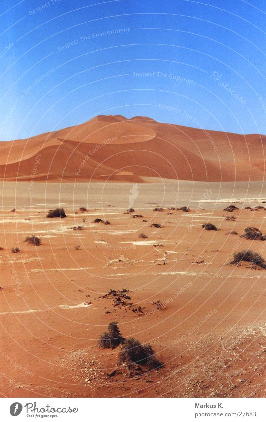 Sossusvlei Namibia Dry Physics Hot Red Loneliness Calm Munich Desert Namib desert Sand Beach dune Thirst Warmth Sparse