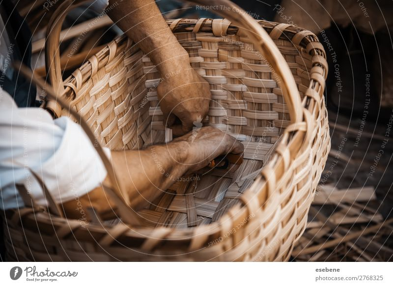 Making wicker baskets Design Handicraft Easter Work and employment Craft (trade) Business Woman Adults Art Nature Cloth Make Natural Brown Tradition Basket