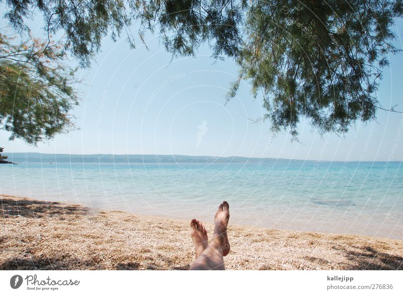mala luka Lifestyle Leisure and hobbies Vacation & Travel Tourism Trip Adventure Far-off places Freedom Summer Summer vacation Sun Sunbathing Beach Ocean