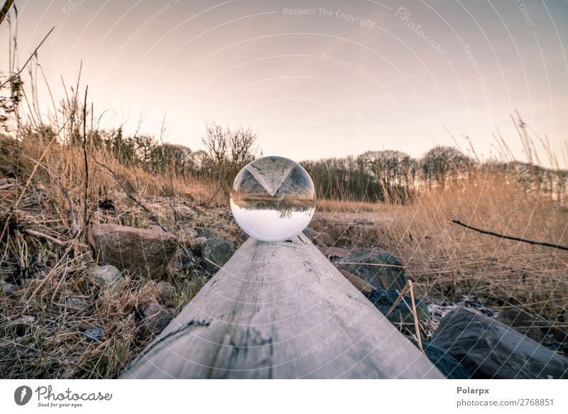 Crystal ball in balance on a wooden log Bowl Beautiful Harmonious Contentment Meditation Winter Mirror Nature Landscape Sky Coast Lake Stone Sphere Glittering