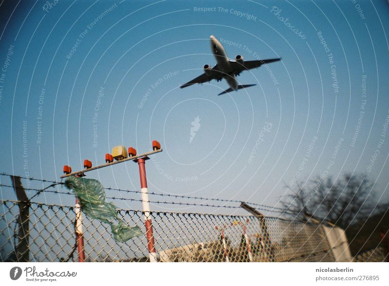 Vacation & Travel Tree Environment Berlin Freedom Flying Tourism Transport Aviation Large Airplane Fence Fear of flying Airplane takeoff Cloudless sky