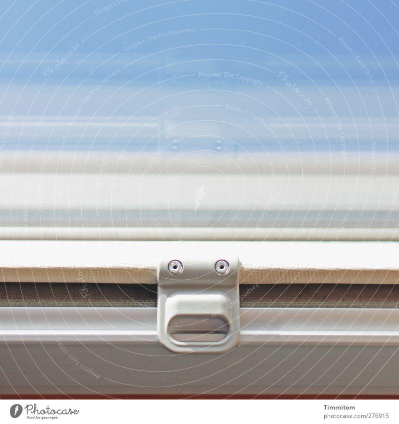 Blue Joy Window Wood Glass Living or residing Simple Plastic Ghosts & Spectres  Surprise Cloudless sky Door handle Skylight