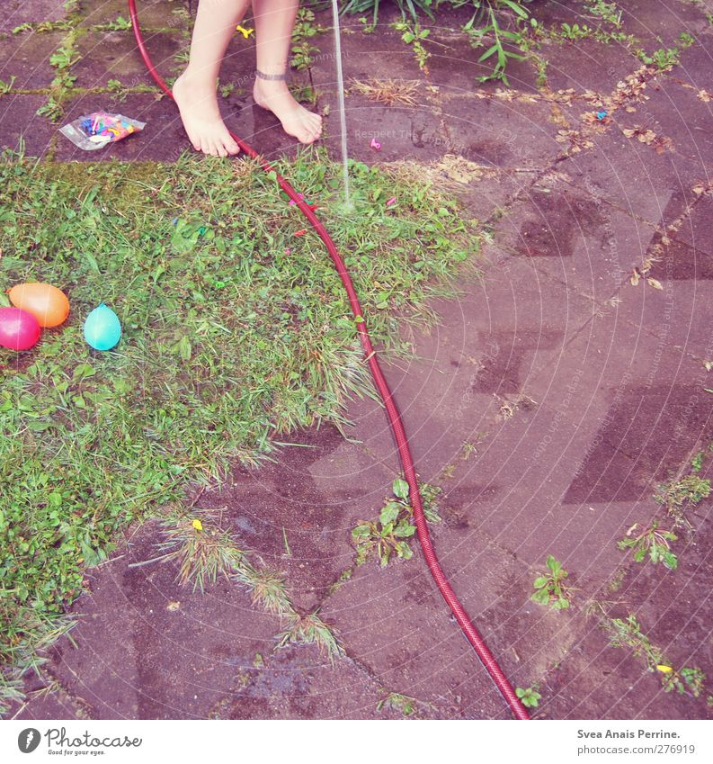 water slaughter. Feminine Young woman Youth (Young adults) Legs Feet 1 Human being 18 - 30 years Adults Meadow Asphalt Water Water hose water bombs Illuminate
