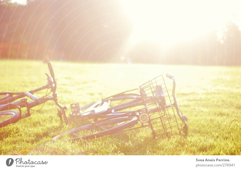 Nature Meadow Warmth Grass Bright Park Lie Bicycle Beautiful weather