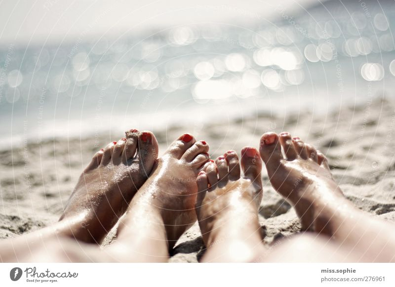 Human being Youth (Young adults) Blue Vacation & Travel Summer Sun Ocean Beach Calm Relaxation Life Sand Feet Friendship Lie Contentment