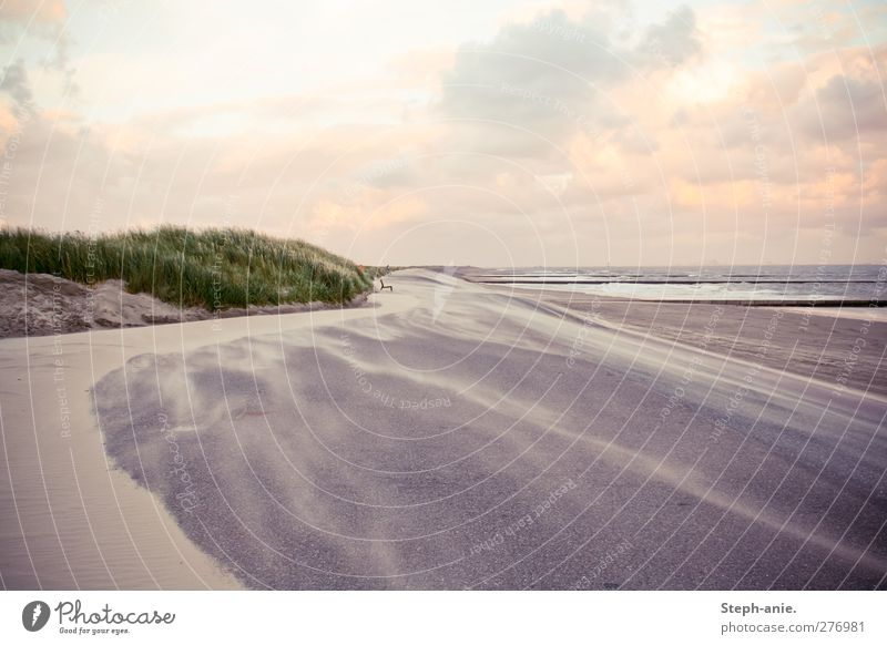 magic Sand Water Sky Clouds Horizon Sunrise Sunset Beautiful weather Wind Grass Waves Coast Beach North Sea Baltic Sea Ocean Island Borkum Observe Movement