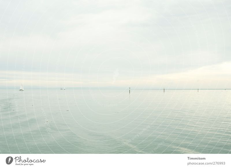 Grey expanse. Vacation & Travel Summer Aquatics Sailing Environment Nature Water Sky Clouds Esthetic Bright Gray White Calm Far-off places Lake Constance