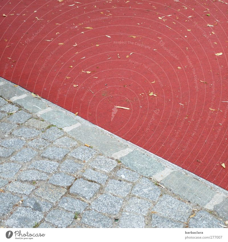 The red square Leaf Places Sidewalk Paving stone Floor covering Stone Line Diagonal Town Gray Red Esthetic Colour Culture Environment Lanes & trails