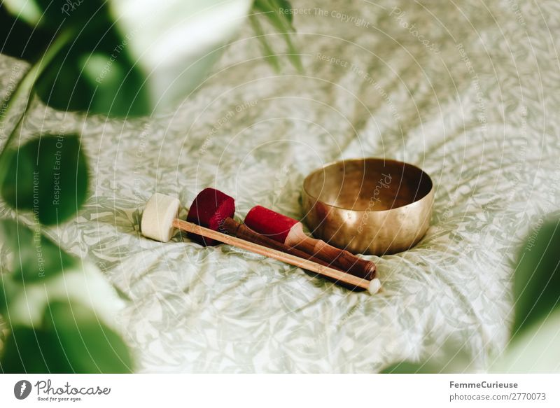 Singing bowl in a cozy home Lifestyle Healthy Medical treatment Harmonious Well-being Contentment Senses Relaxation Calm Meditation singing bowl Bowl Swing