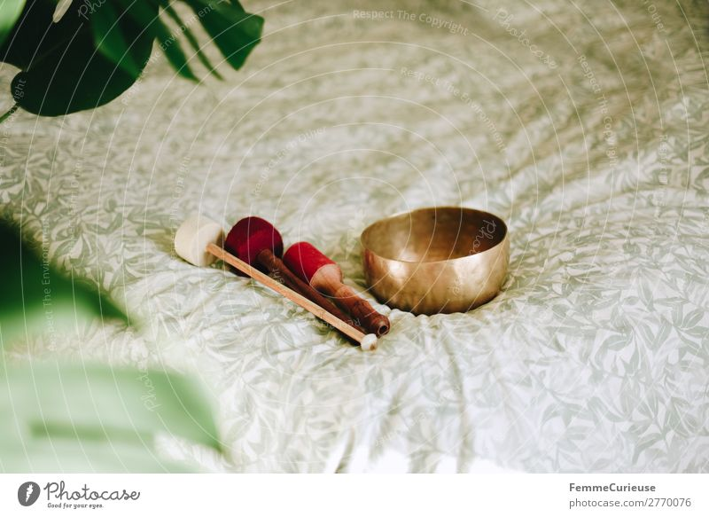 Singing bowl in a cozy home Healthy Harmonious Well-being Contentment Senses Relaxation Calm Meditation Living or residing Attentive singing bowl Bowl Bronze
