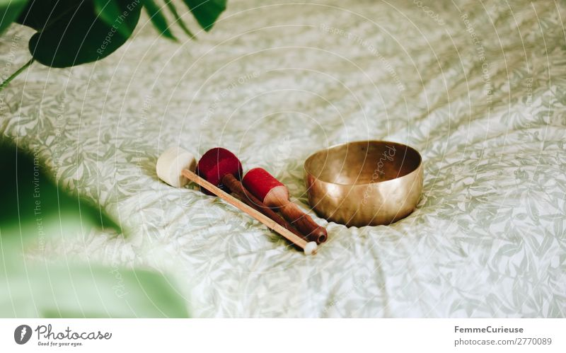 Singing bowl in a cozy home Healthy Harmonious Well-being Contentment Senses Relaxation Calm Meditation Living or residing Attentive singing bowl Bowl Sound