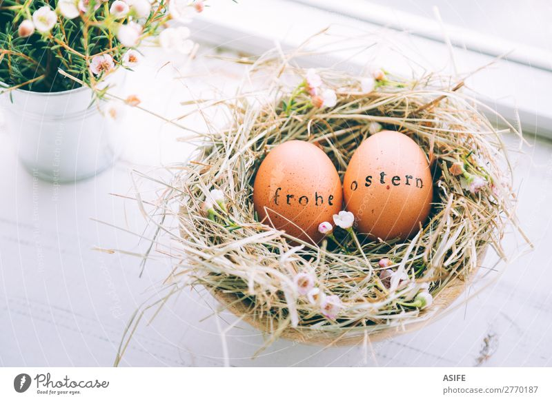 Easter eggs with Frohe Ostern text stamp Beautiful Handcrafts Decoration Flower Grass Wood Ornament Funny Natural Cute Original White Tradition Egg easter eggs