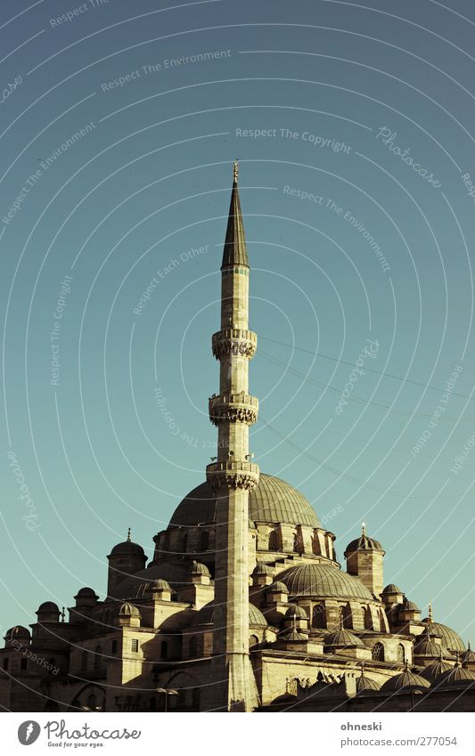 Istanbul in the evening Old town Deserted Manmade structures Architecture Mosque Belief Religion and faith Islam Minaret Colour photo Exterior shot