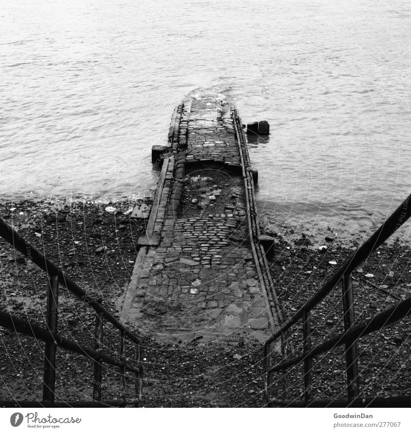 Thames. Environment Nature River Themse London Town Stairs Old Authentic Infinity Gloomy Dry Moody Black & white photo Exterior shot Deserted Day
