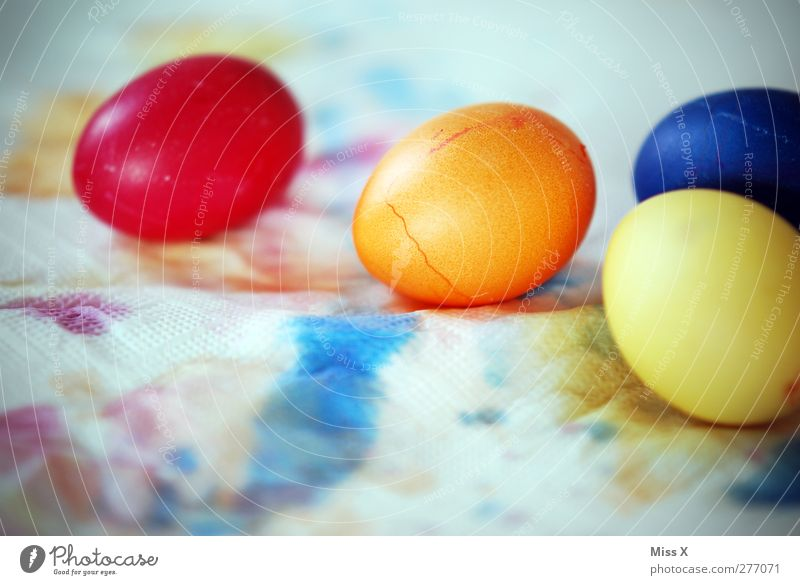 Egg Egg Egg Food Nutrition Easter Round Blue Multicoloured Yellow Red Easter egg Easter egg nest Orange 4 Dyeing Play of colours Painted Tradition Dry Eggshell
