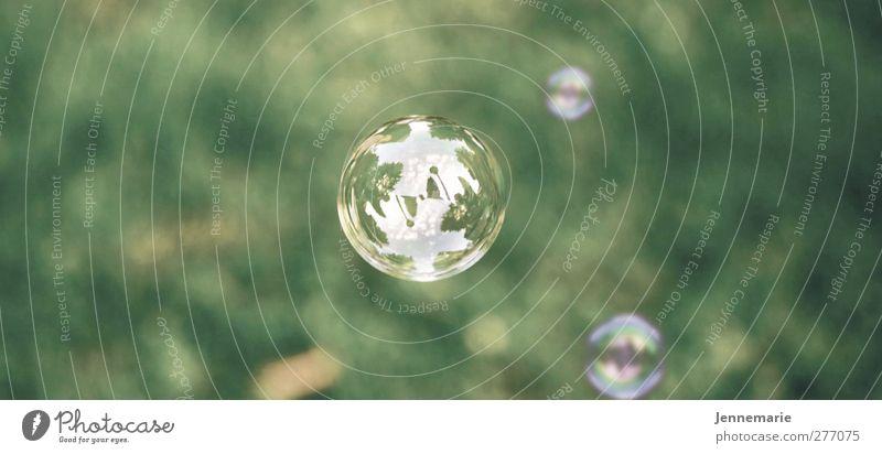 Nature Green Summer Playing Grass Spring Esthetic Soft To enjoy Sphere Breathe Soap bubble