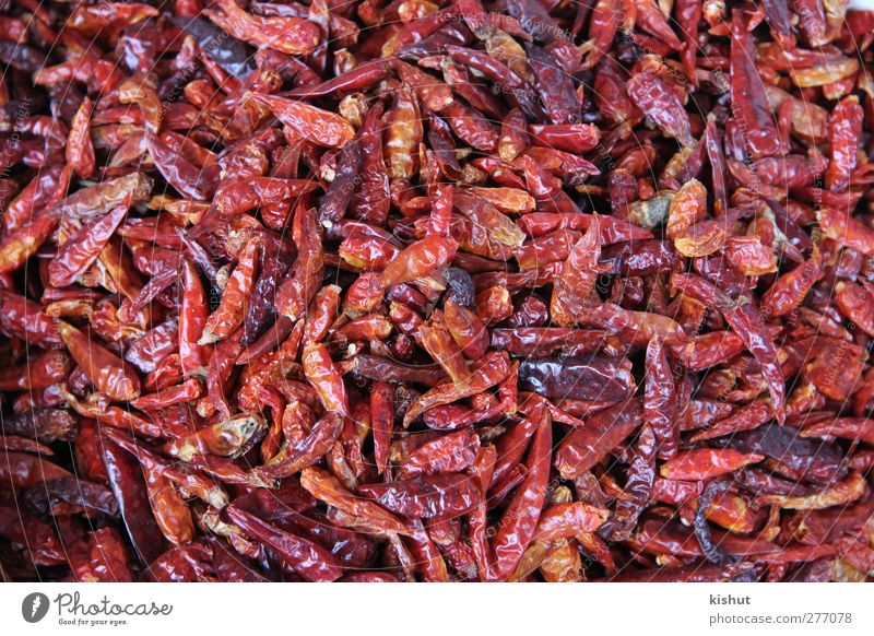 dry, red and spicy Red Food Nutrition Vegetable Herbs and spices Organic produce Vegetarian diet