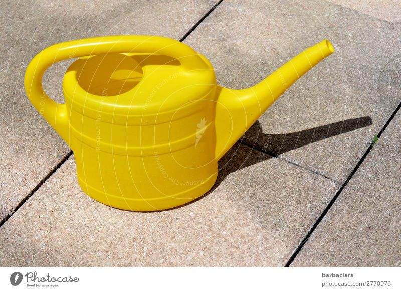 water again... Living or residing Gardening Environment Water Terrace Watering can Stone Stand Warmth Yellow Colour Growth Colour photo Exterior shot Pattern