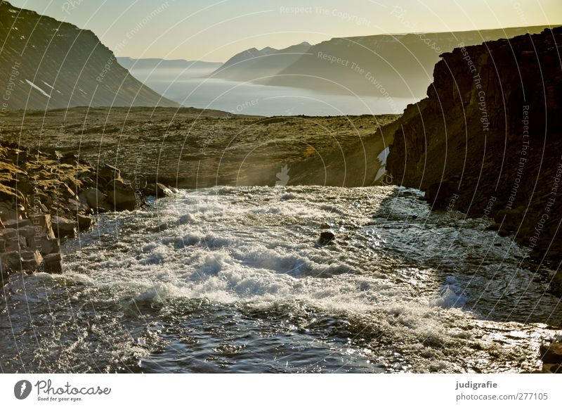 Iceland Environment Nature Landscape Elements Water Climate Rock Mountain Fjord River Waterfall Dynjandi Westfjord Fantastic Natural Wild Moody Flow