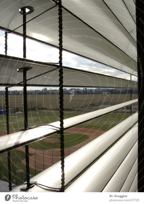 Window Stripe Karlsruhe Baseball
