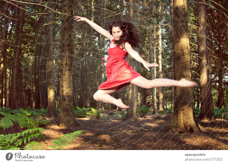 Human being Woman Nature Youth (Young adults) Summer Tree Plant Red Adults Forest Landscape Feminine Young woman Body Dance 18 - 30 years