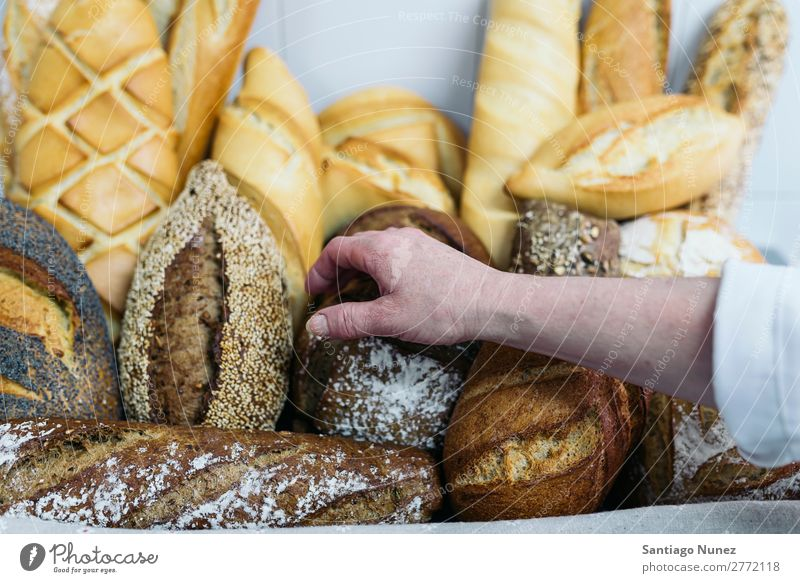 Many mixed breads and rolls. Bread Fresh Food White Hand Take Bakery Background picture Breakfast Meal Grain Flour loaf Seed whole Wheat Baking Dough Baguette
