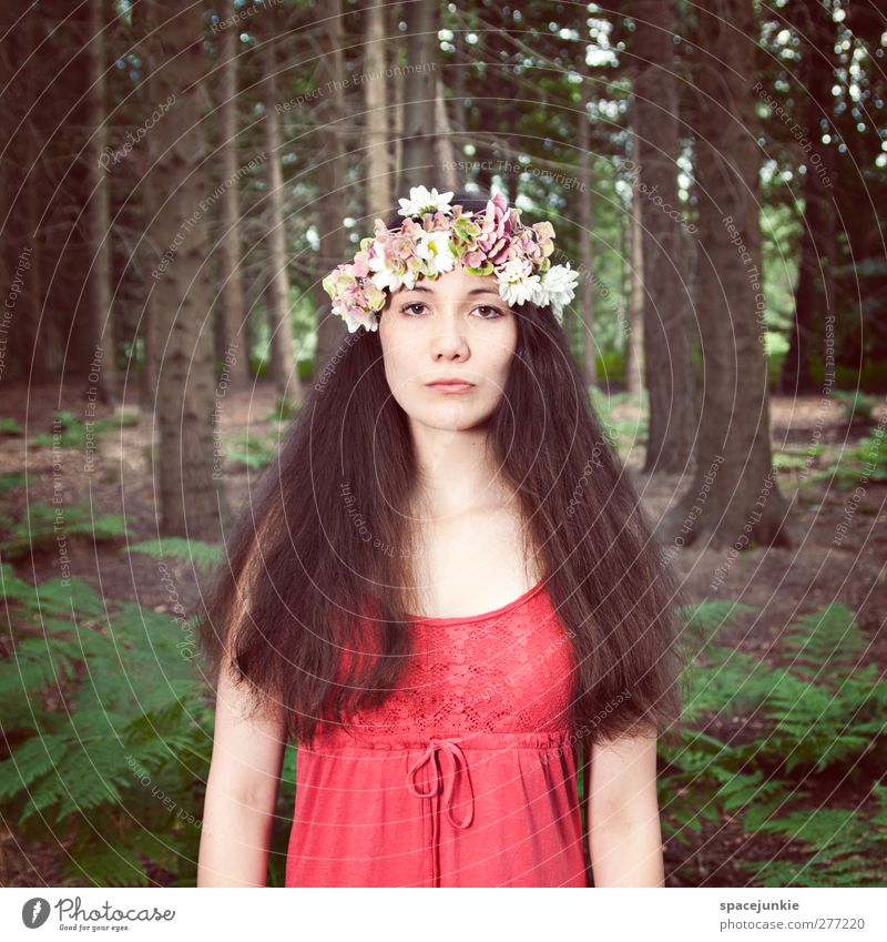 Human being Woman Nature Youth (Young adults) Tree Red Flower Adults Forest Landscape Feminine Young woman 18 - 30 years Exceptional Bushes Dress