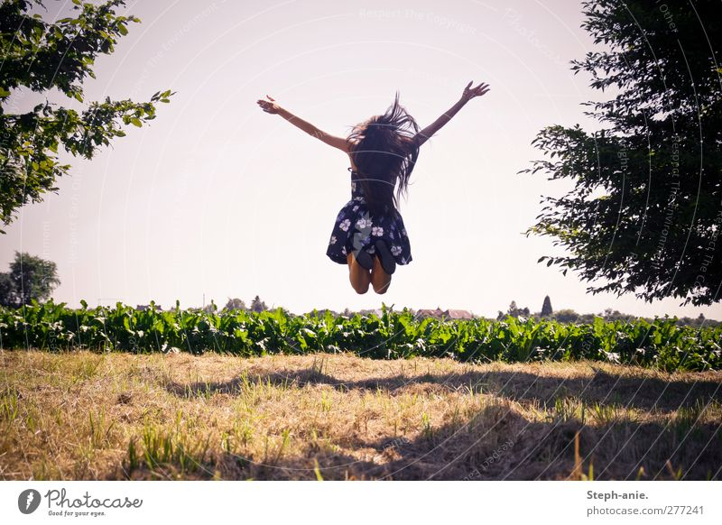 Woman Youth (Young adults) Summer Tree Adults Young woman Meadow Grass Movement Jump Field Authentic Happiness Individual To enjoy Dress