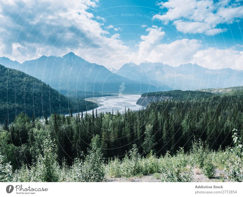 River in valley of mountains Landscape Mountain Forest Valley Vacation & Travel Destination Natural