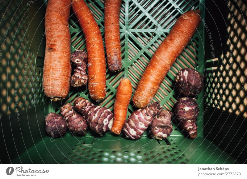 Carrots and Jerusalem artichoke in the organic box Food Vegetable Nutrition Organic produce Vegetarian diet Diet Shopping Healthy Health care Healthy Eating