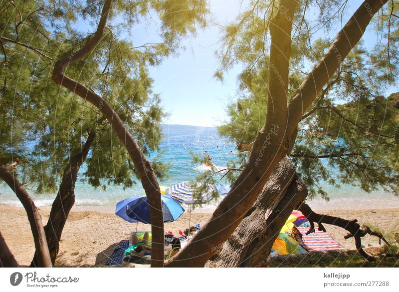 mala luka Lifestyle Leisure and hobbies Playing Vacation & Travel Tourism Trip Far-off places Freedom Summer Summer vacation Sun Sunbathing Beach Ocean Island