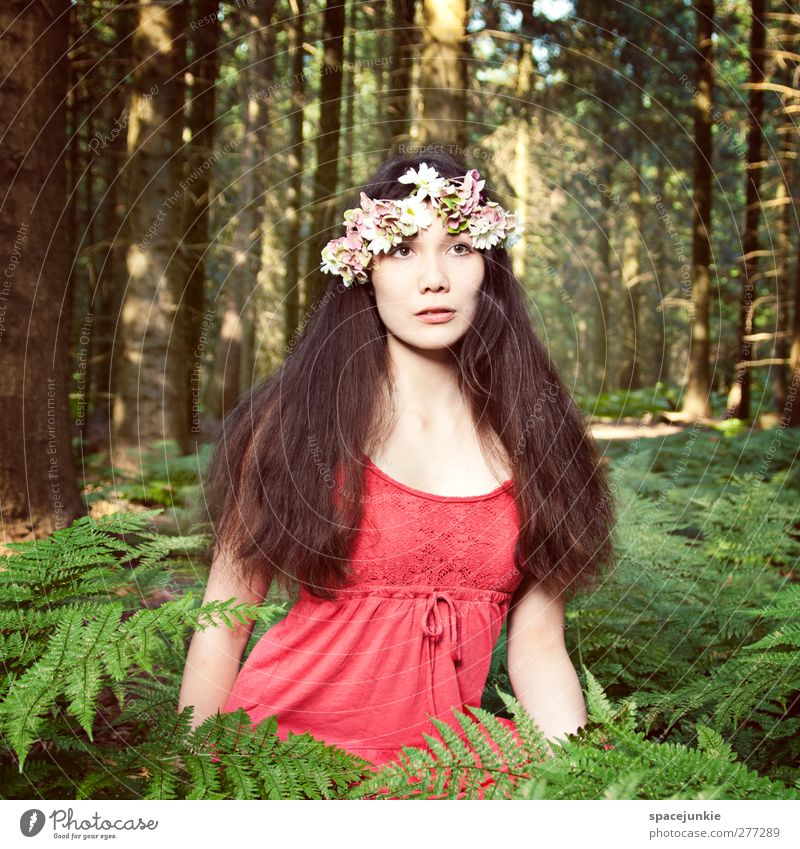 Human being Woman Youth (Young adults) Green Tree Plant Red Flower Adults Forest Landscape Environment Feminine Eroticism Young woman 18 - 30 years