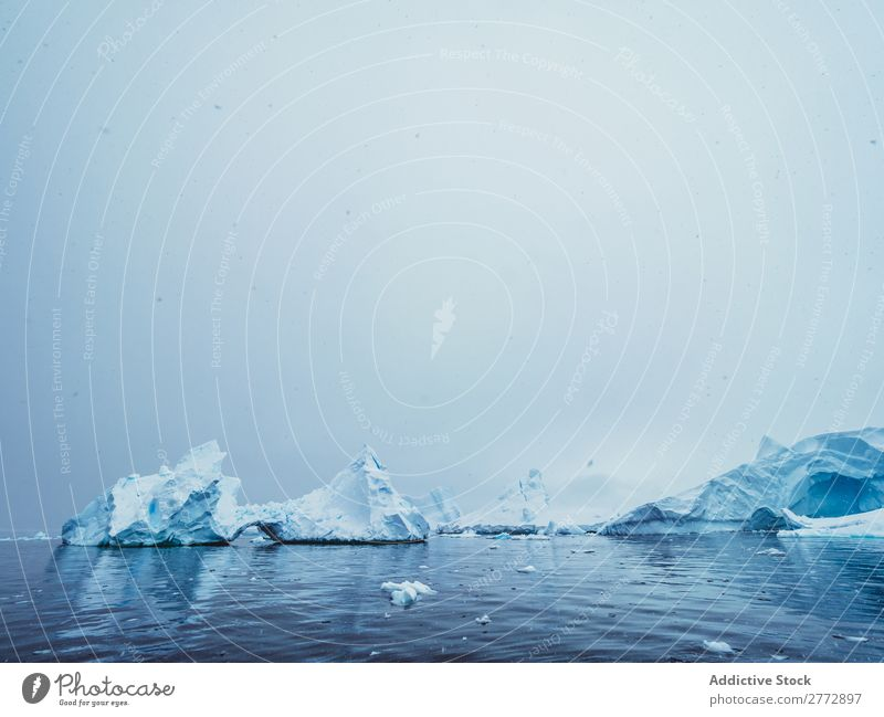 Glaciers in sea Wall (building) Ice Penguin Ocean Iceberg Landscape Dramatic Environment huge Beauty Photography Water polar North The Arctic Vacation & Travel
